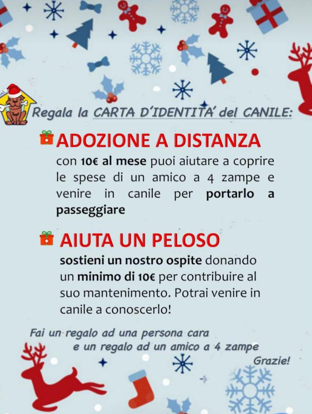 Pergamene di Natale: un regalo per i vostri cari e per i nostri cani!
