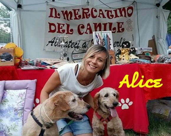 Alice ed Hellen