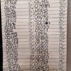 numeri vincenti lotteria pro canile e gattile